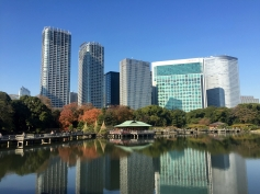 Towers in Tokyo